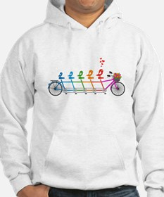 tandem bicycle with cute birds family Hoodie