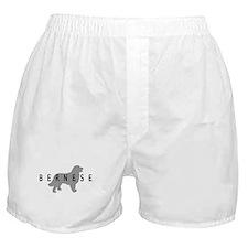 Bernese Dog Boxer Shorts