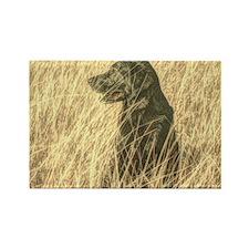 country landscape black labrador Rectangle Magnet