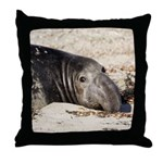 Northern Elephant Seal Throw Pillow