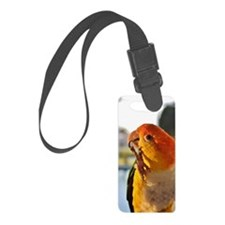 White Bellied Caique Parrot Thin Luggage Tag