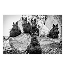 Vintage Scottie Dogs Postcards (Package of 8)