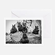 Vintage Scottie Dogs Greeting Cards