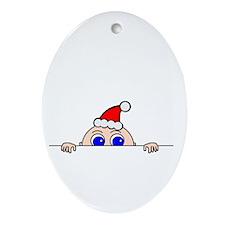 Christmas Baby Peeking Ornament (Oval)