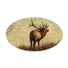 outdoor landscape hunter wild elk Oval Car Magnet