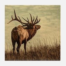 outdoor landscape hunter wild elk Tile Coaster