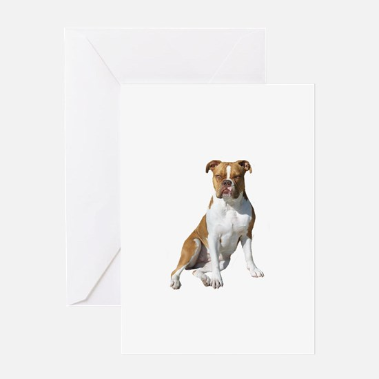 Am Bulldog 2 (Brn-W) Greeting Card