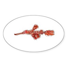 Harlequin Ghost Pipefish Decal