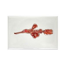 Harlequin Ghost Pipefish Magnets