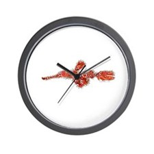 Harlequin Ghost Pipefish Wall Clock
