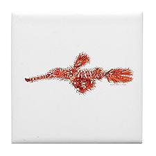 Harlequin Ghost Pipefish Tile Coaster