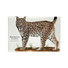 Iberian Lynx Rectangle Magnet