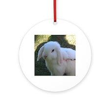 white bunny Round Ornament