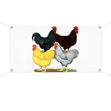 Heavy Breeds Rooster Quartet Banner