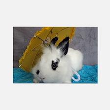 Lu-April Showers Bunny Magnets