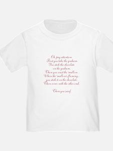 The Origin of Smores T-Shirt