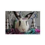 Della-New Years Bunny Magnets