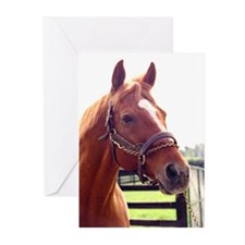 AFFIRMED -Photo2_Right side.jpg Greeting Cards