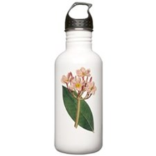 Vintage Red Plumeria o Water Bottle