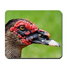 Duck01 Mousepad