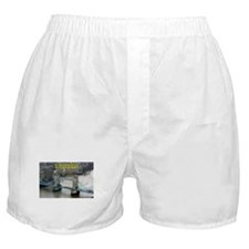 Tower of London Pro Photo Boxer Shorts