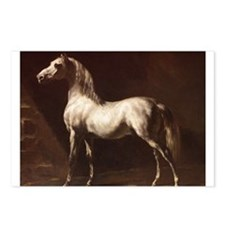 White Arabian Horse Postcards (Package of 8)