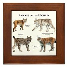 Lynxes of the World Framed Tile