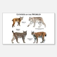 Lynxes of the World Decal