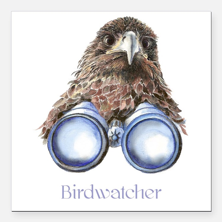 Birdwatcher Bird Watching You Humor Square Car Mag