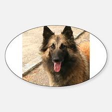 Belgian Shepherd Dog (Tervuren) Decal