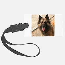 Belgian Shepherd Dog (Tervuren) Luggage Tag