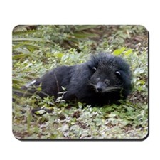 Bearcat Binturong Mousepad