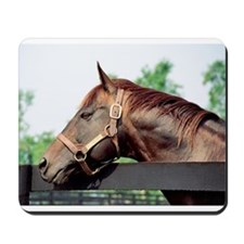 SEATTLE SLEW Mousepad