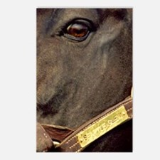 SEATTLE SLEW Postcards (Package of 8)