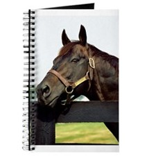 SEATTLE SLEW Journal