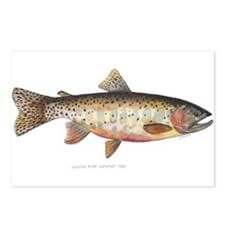 Colorado River Cutthroat Trout Postcards (Package