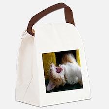 Yawning Kitten Canvas Lunch Bag