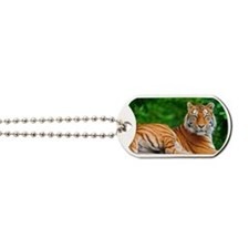tiger Dog Tags