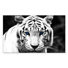 White Tiger Blue Eye Decal