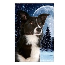 Border Collie Christmas Postcards (Package Of 8) P
