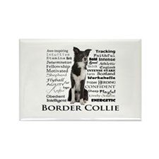 Border Collie Traits Magnets