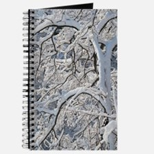 Snow Covered Journal
