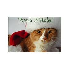 Italian Greeting Santa Cat Rectangle Magnet