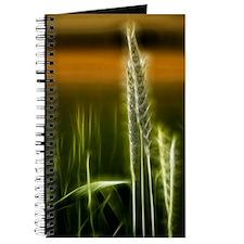 Art of Plant Journal