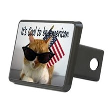 Cool Cat with American Fla Hitch Cover