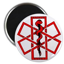 "Type 1 Diabetic 2.25"" Magnet (10 pack)"