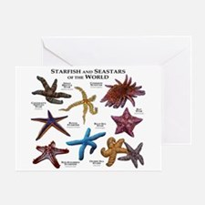 Starfish & Seastars of the World Greeting Card