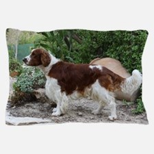 Welsh Springer Spaniel Pillow Case