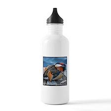 Mandarin Resting Water Bottle Stain