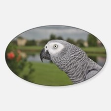 African Grey Parrot lake view Decal